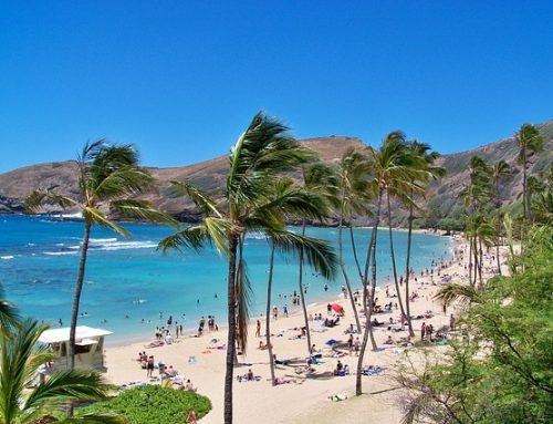 Veckans Specialare: Hawaii
